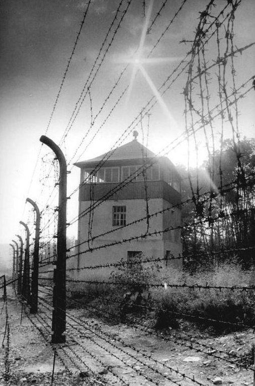 Wachanlagen des KZ Buchenwald Karl Hardt gehört zu den politischen Gefangenen, die nach Beendigung ihrer gerichtlich entschiedenen Haftstrafe in ein KZ eingewiesen werden. Der 41-jährige Mörfelder wird Ende März 1938 vom Butzbacher Gefängnis in das KZ Buchenwald überstellt. Dieses Lager wurde erst Mitte 1937 eröffnet. Hardt bekommt daher noch die niedrige Häftlingsnummer 257. Nach der Reichspogromnacht im November 1938 werden 10.000 jüdische Häftlinge eingeliefert, darunter sind auch drei Mörfelder: Max Strauß, Max Cohn und Adolf Reiß. Ab März 1943 ist auch Jakob Weg als politischer Häftling in diesem KZ.