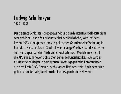 Schulmeyer Ludwig